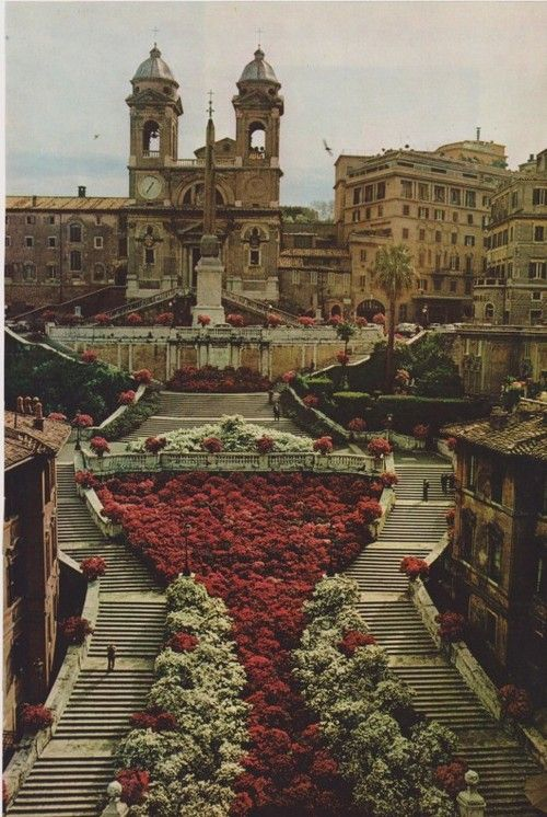 Spanish Steps in Rome: It did NOT look like this when I was there!