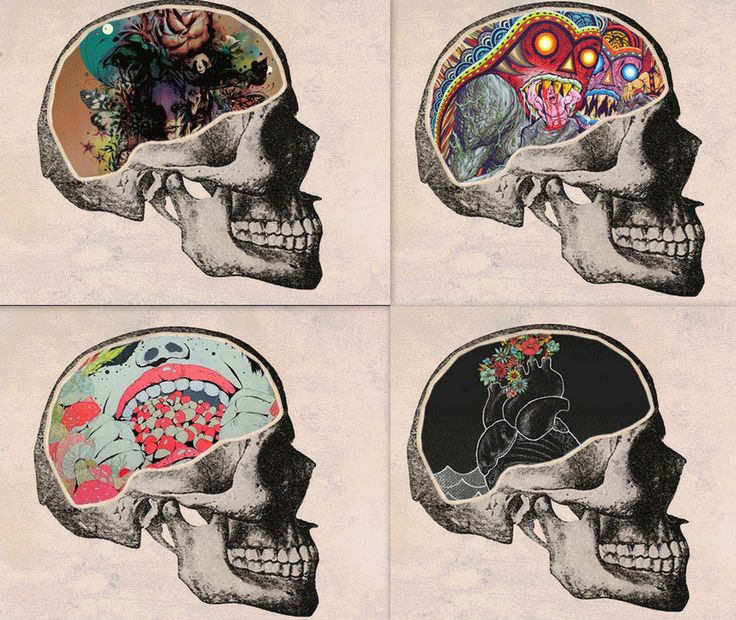 Artsy Skull Collage. Could be inspired by Mexican Day of the Dead. Celebrating the end, new beginnings.