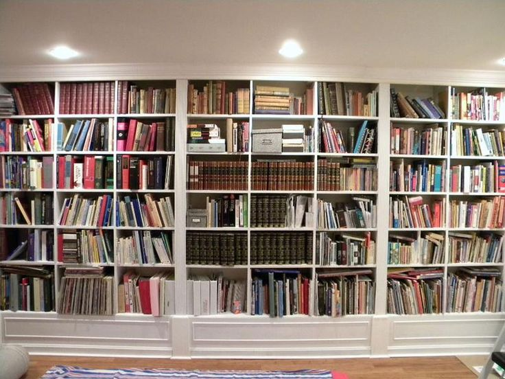 Bookshelf Decorating Ideas Bookcases And Library Ladder