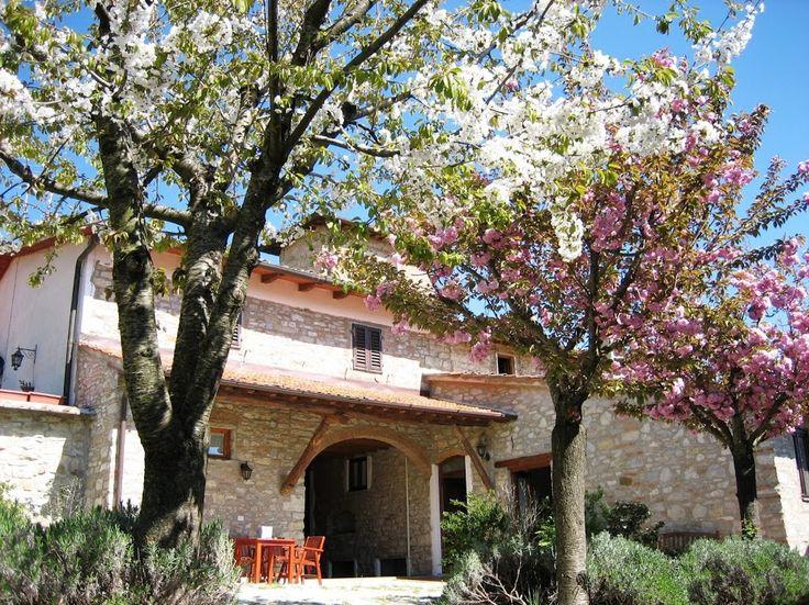 Apartment Limonaia - Podere Vignola, Pontassieve, Tuscany, Italy.
