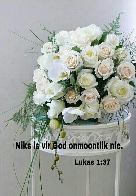 Lukas 1:37 Want geen ding sal by God onmoontlik wees nie.