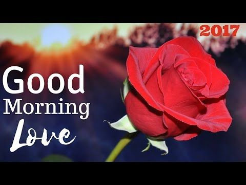 Good Morning My Love | Morning Quotes With Pictures of Flowers for Husband or Wife - YouTube