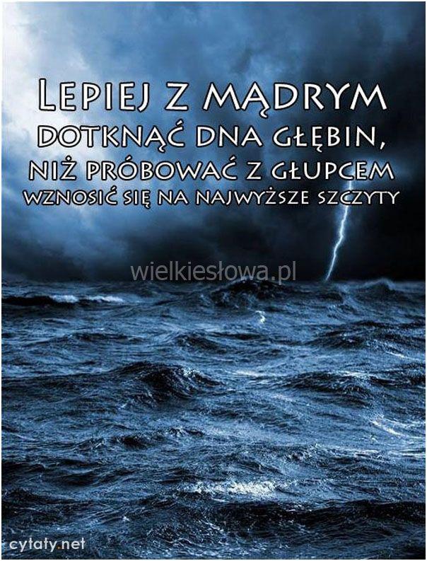 Lepiej z mądrym dotknąć dna głębin, niż... #Autor-Nieznany,  #Głupota-i-naiwność, #Mądrość-i-wiedza