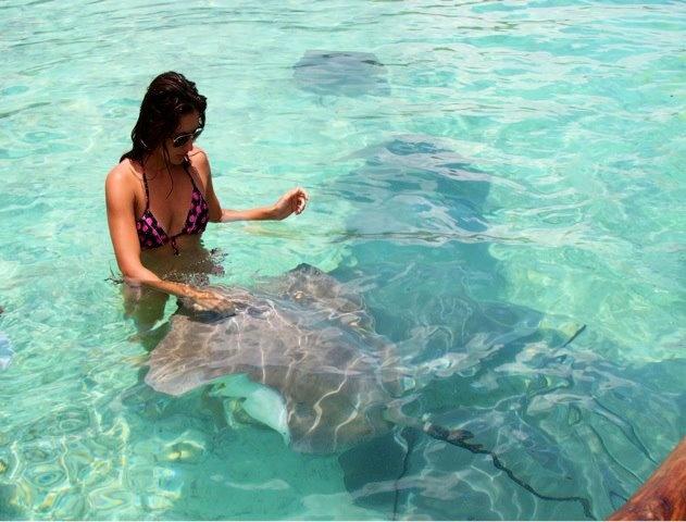 Feeding Stingrays, Bora Bora Tahiti
