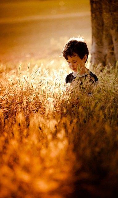 : Autumn, Beautiful, Children, Golden Lights, Wheat Fields, Little Boys, Photography, Mornings Lights, Kid