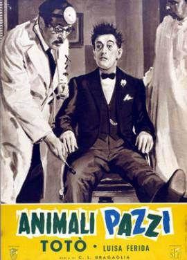 Animali pazzi