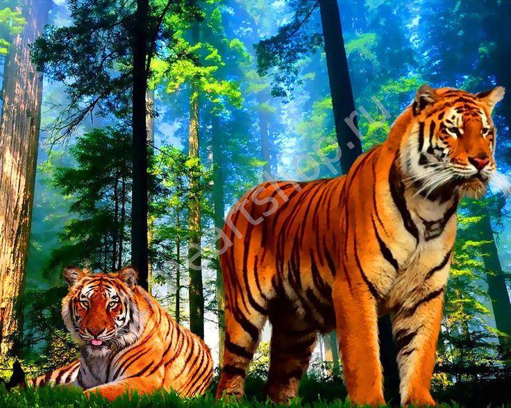 Два тигра, картина раскраска по номерам, картина своими руками, размер 40*50см, цена 750 руб.