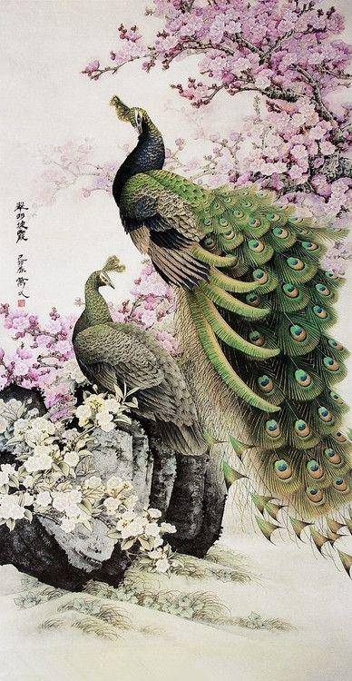 Peacock Art ~ by Gongbi Painting 翠羽披霞