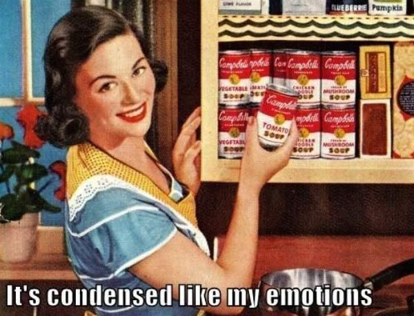 Sarcastic 1950's Housewife Memes ~ Sarcasm~ condensed like my emotions
