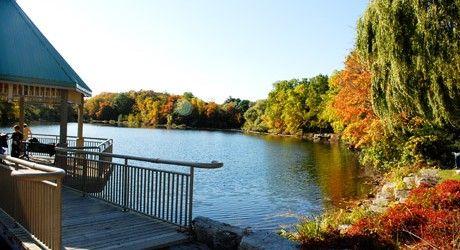 Mill Pond in Autumn..