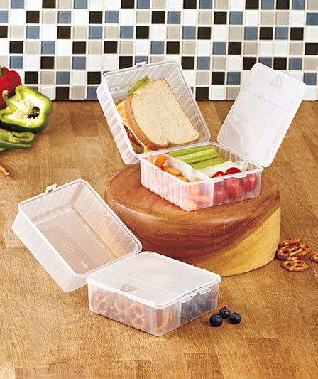 Lunch Cubes-a trashless way of carrying your lunch. Would be great for the kids on days we are on the go.