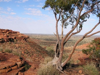 the heart of the outback