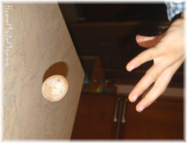 Esperimenti scientifici con in bambini: l'uovo che rimbalza