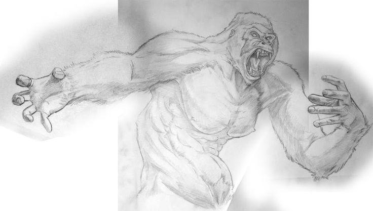 gorilla tattoo sketches | Gorilla Sketch Drawing Tarzan Gorilla Sketch