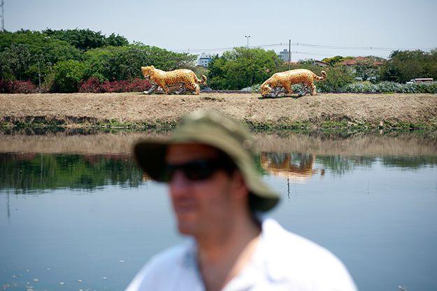 """""""A hora da onça beber água"""" é o nome da intervenção em frente à estação de trem de Pinheiros. Duas gigantes onças infláveis - animal símbolo da fauna brasileira - estão na beira do rio. Em primeiro plano, Srur, o criador da obra: http://abr.ai/14Ag8il"""