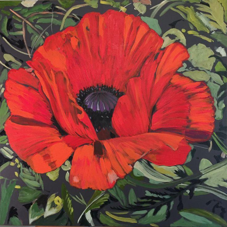 Oriental poppy, Jeremy Vaughan