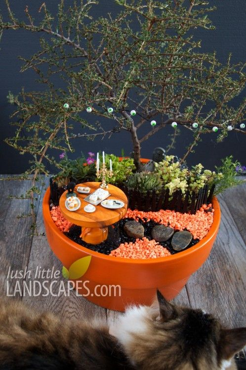 Halloween fairy gardens - This fairy garden is for the detail-oriented! Every minute detail is included here: from the scary cookies and cupcakes found in the tiny table, to the eyeball garland. If you're a major Halloween lover and love a craft project, this is for you.