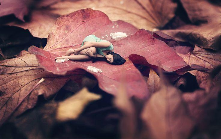 Thumbelina by Christophe Maclaren on 500px