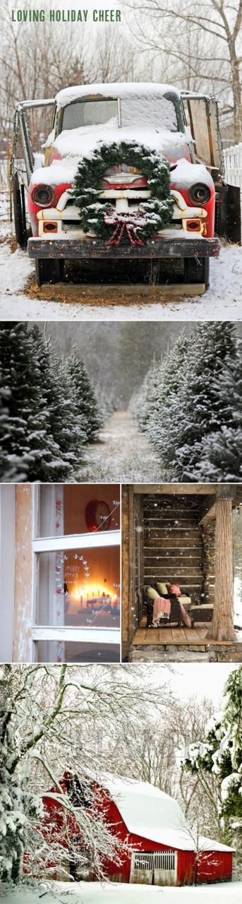 A white christmas: Holidays Cheer, Christmas Time, Christmas Style, Old Trucks, Winter Holidays, White Christmas, Red Barns, Country Christmas Styl, Christmas Barns