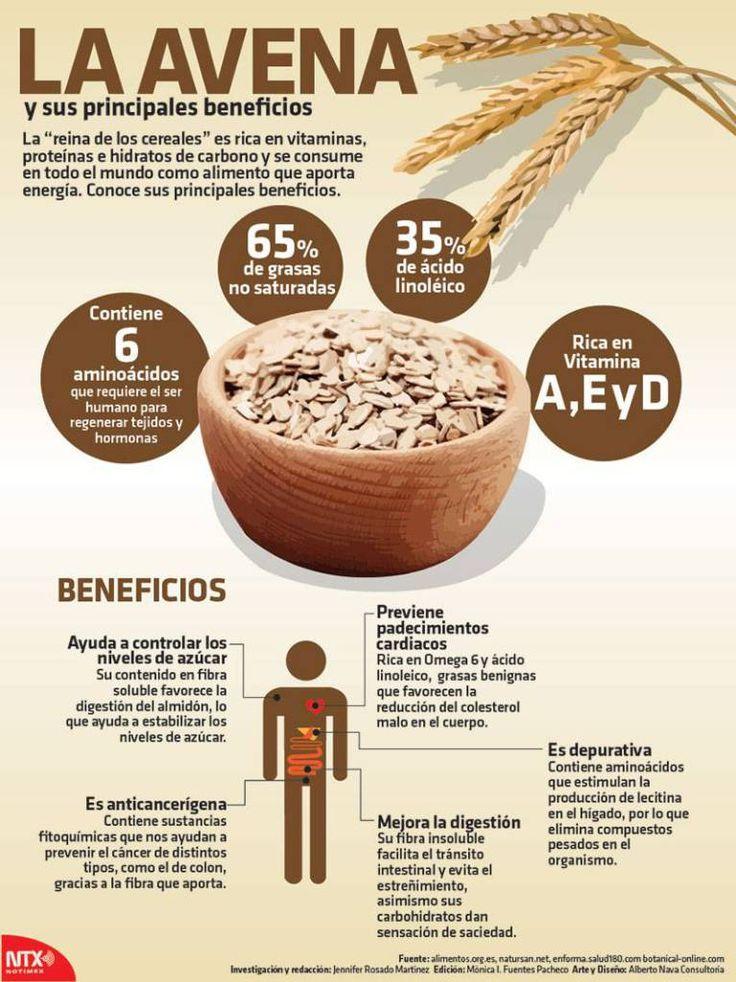 Infografia de la avena y sus principales beneficios, rica en vitaminas, proteínas e hidratos de carbono y se consume en todo el mundo como alimento que aporta energía.