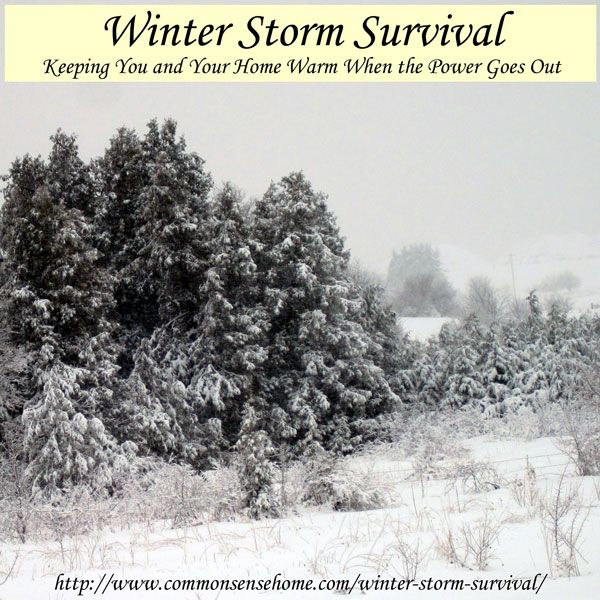 Winter Storm Survival - Keeping You and Your Home Warm When the Power Goes Out