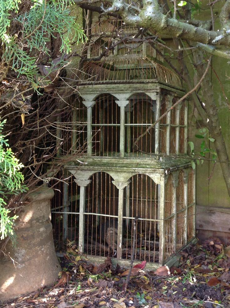 Greenhouse Garden Design