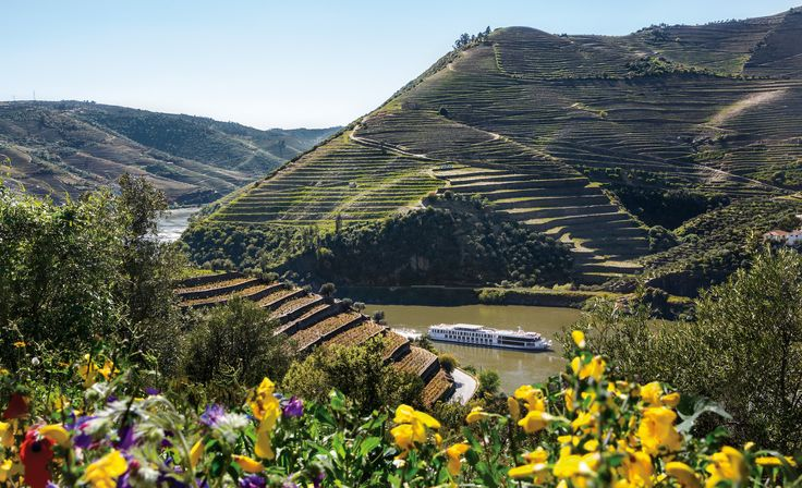 From the Square - not just any port of call. Douro River Valley boasts lovely vistas and storied towns. It is also home to Port country, the oldest demarcated wine region in the world. @uniworldcruises