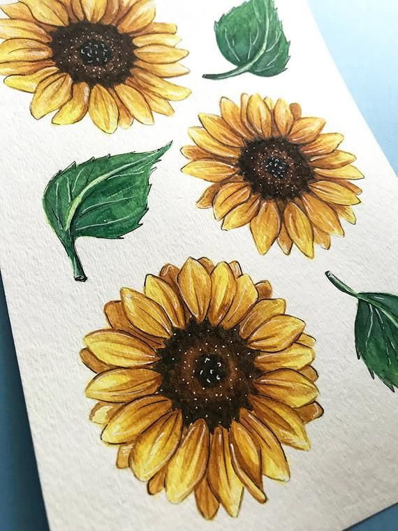 Sunflower Painting Floral Watercolor Artwork Original With