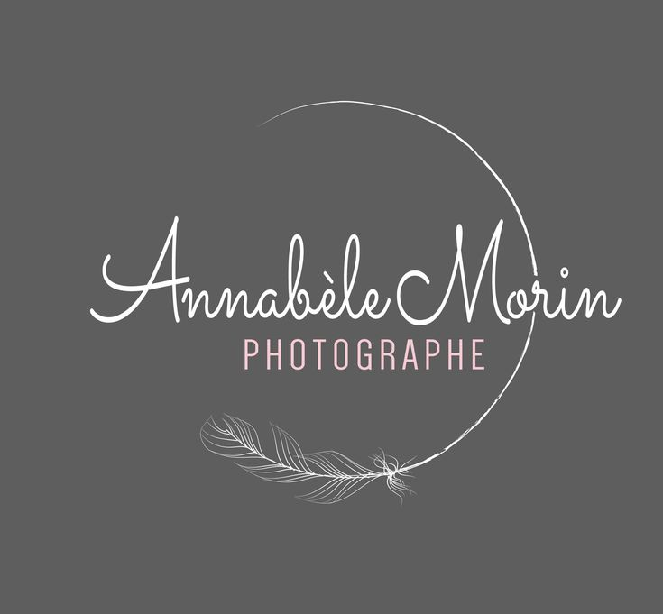 Photography design - feather logo design - gypsy logo design - feminine logo