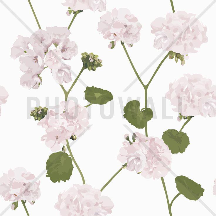 Geranium - white - Fototapeter & Tapeter - Photowall