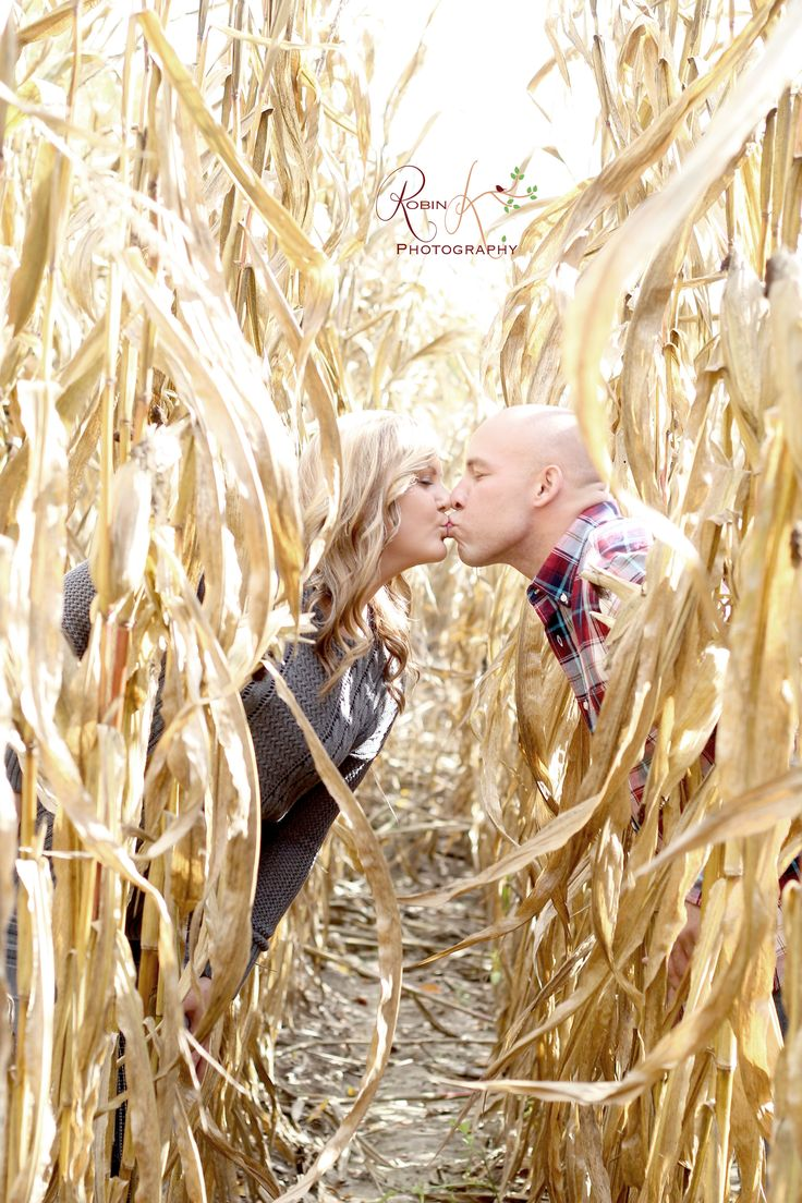 #engagement photo in a corn field