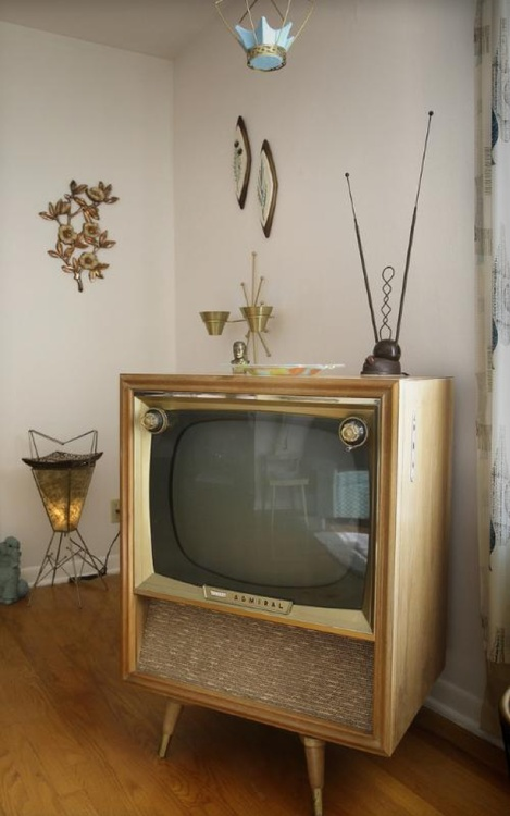 I would love to have an old television as a centerpiece, especially since I don't watch tv at all!