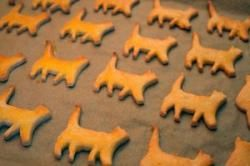 Homemade cat treats. Recipe: 1/2 Pound ground turkey, 1/2 Cup grated carrots, 1/4 Cup Parmesan cheese, 1/2 Cup finely crushed crackers, 1/4 Cup powdered milk, 1 Egg, 1 Tablespoon Brewer's yeast, 1/2 Teaspoon salt. Bake for 20 min on 160 degrees.