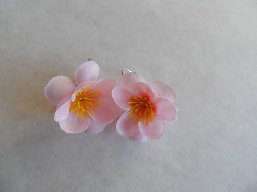 petronela / nežné ružové náušničky