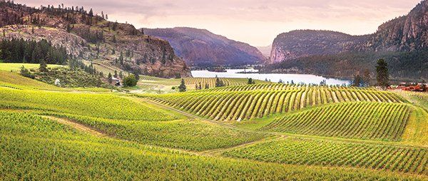 Penticton photographer captures golden hour - Penticton Western News John Poon took part in capturing the golden hour with photographers across Canada. Blue Mountain Vineyard Blue Mountain Vineyard located on the shore of Vaseux Lake in Okanagan Falls, British Columbia is a Canadian Winery.… johnpoon.ca
