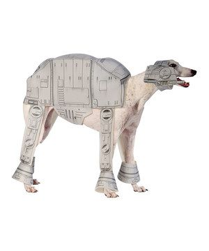 Joe wants a greyhound just so he can dress it like this!!!