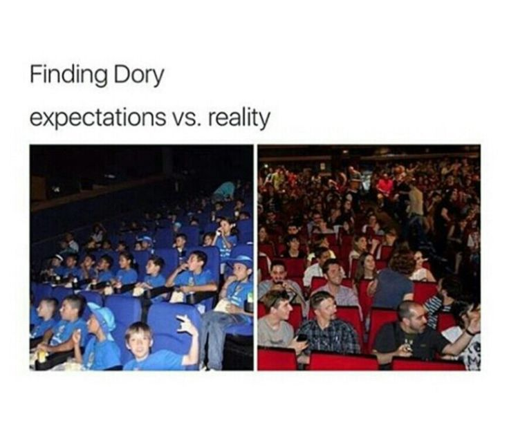 Lol I went to watch Finding Dory a few days ago. This looks about right XD