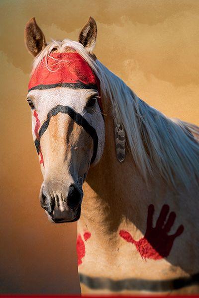 Scenes from the Tomahawk – Lakota Pony shoot