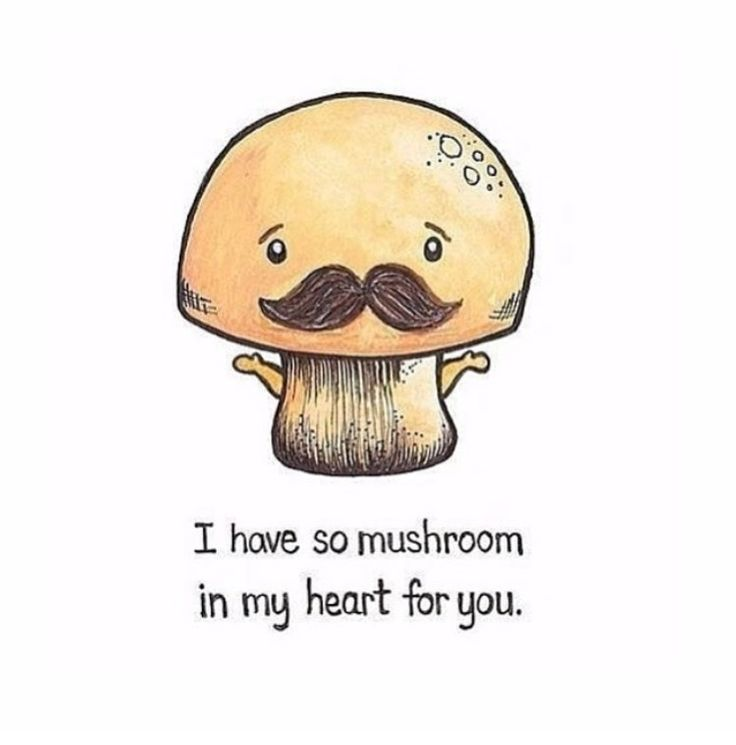 I have so mushroom in my heart for you                                                                                                                                                                                  More