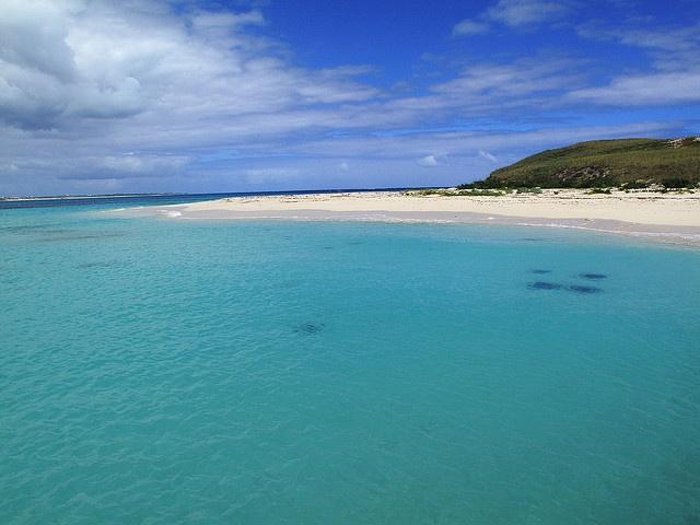 Gibbs Cay, Grand Turk sting rays
