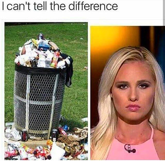 idk if I've mentioned it yet but I DESPISE TOMI LAHREN AND CAN SHE NEVER OPEN HER MOUTH TO SPEW HER IGNORANT BULLSHIT thank you. #tomilahren - Afton (personal: @aftonlevine spam: @introvert.co)
