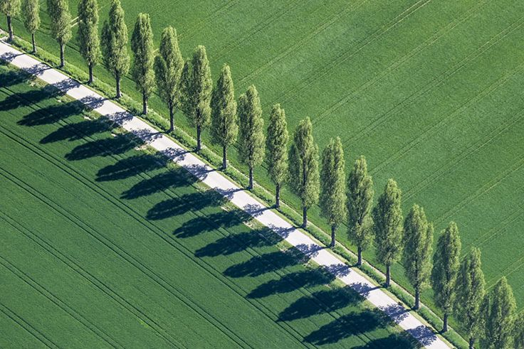 Photographer Klaus Leidorf's Aerial Archaeology  http://www.thisiscolossal.com/2014/04/aerial-archaeology/