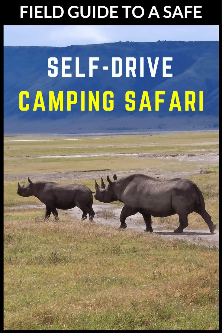 Read all about preparation, patience, and safety tips for your self-drive safari in Africa!