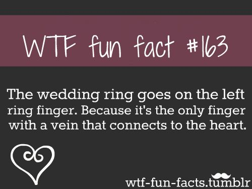 WTF-fun-facts : funny weird facts on we heart it / visual ...