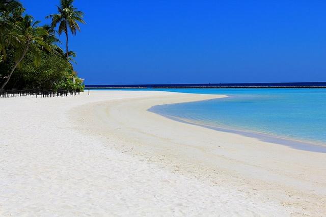 Maldive, Halaveli      Viaggi