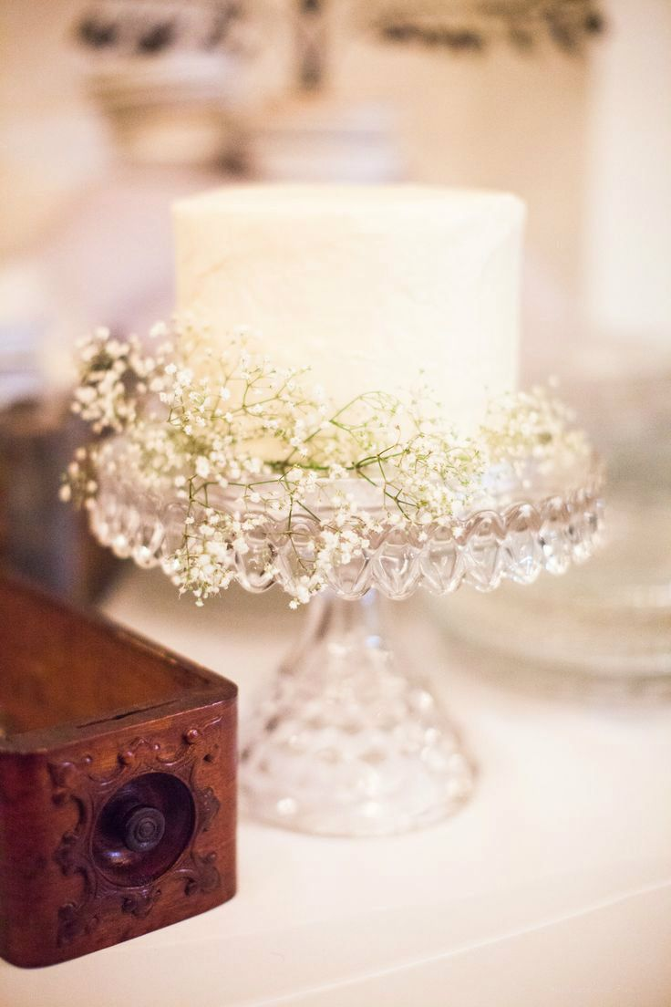 Stretch the budget: small cake on a gorgeous cake stand and simple baby's breath for decoration--or another flower(s). Use sheet cake for serving.