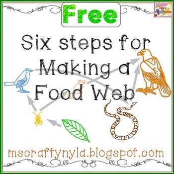 Free Posters - 6 Steps for Making a Food Web