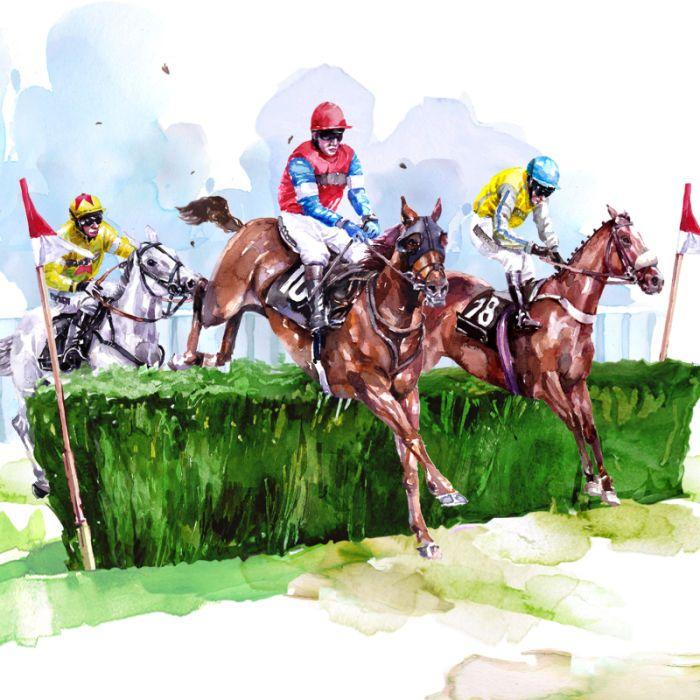 Harrison Ripley - Horse Jumpers