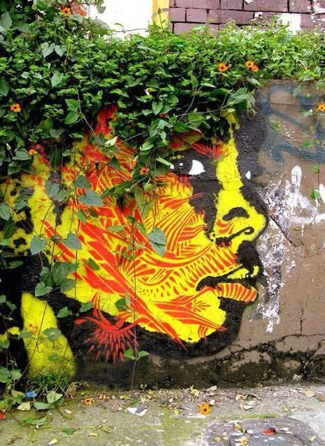 Street Art & Nature in Colombia. Via Google StreeArt