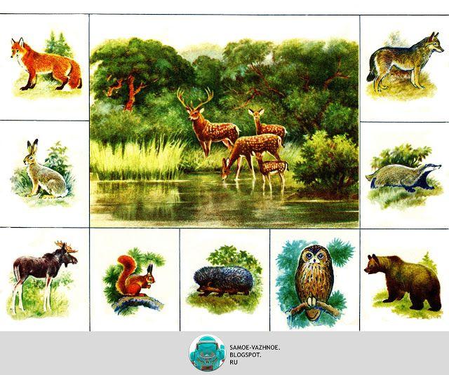 Zooloto Szovjetunió Állatkert Állatkert bingó lottó USSR Az állatvilágban a…